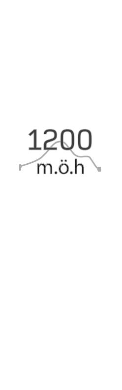 high_1200